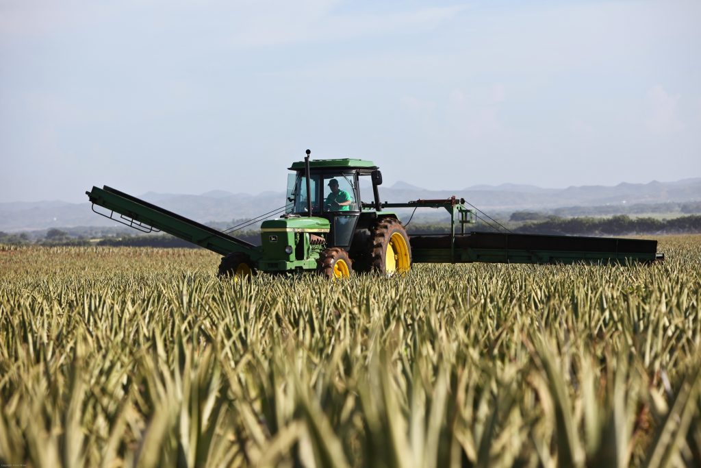 Finance for Farmers: Agricultural Funding Options